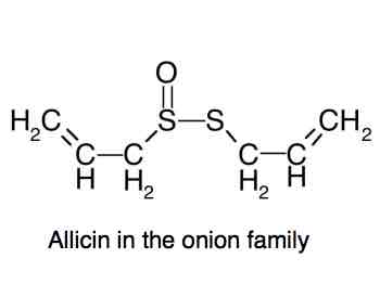 The chemical structure of allicin.