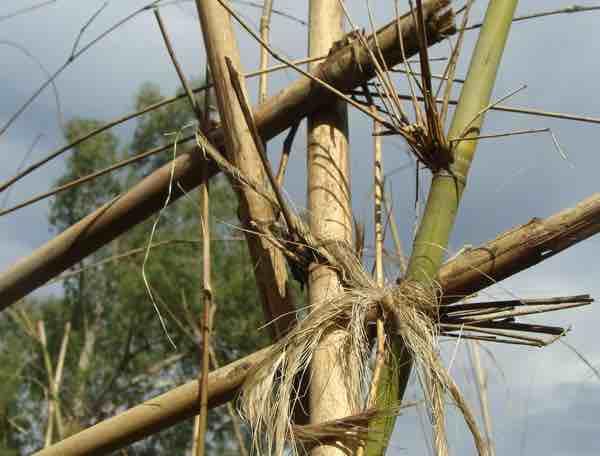 Bamboo garden trellis ties