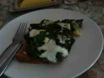 Coriander is a wonderful herb to add to your eggs Florentine for the perfect Banting breakfast.