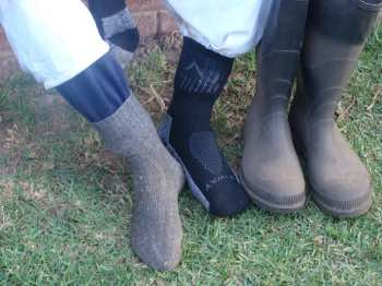 Protect your ankles from bee stings with two pairs of socks and white gumboots.