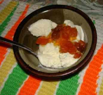 Easy homemade vanilla ice cream with gooseberries