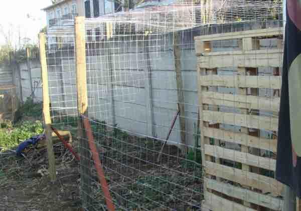 Chicken coop for broody hen