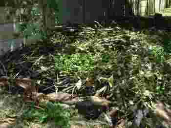 A good compost heap is made with alternating layers of dry and green material.