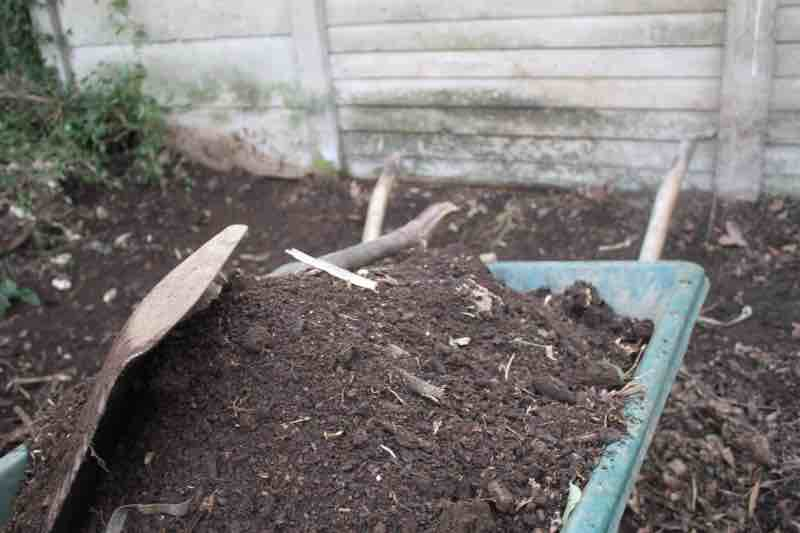 Compost heaps in late winter.