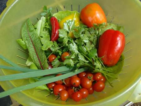 A divine salad should include herbs like coriander and parsley.