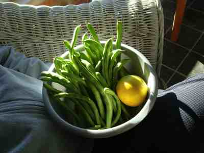 Evergreen pole beans and lemon juice make a delicious salad.