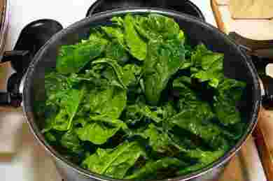 Fresh spinach salad recipes