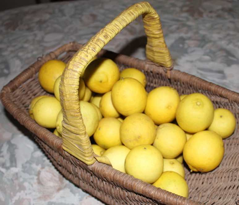 Health benefits of limes in a basket.