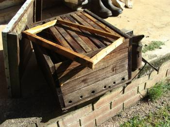 Honey bee hive with frames