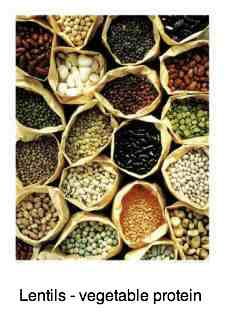Legumes like lentils have folate and are the best source of vegetable protein.