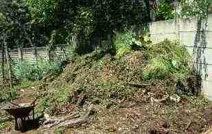 Make a compost pile