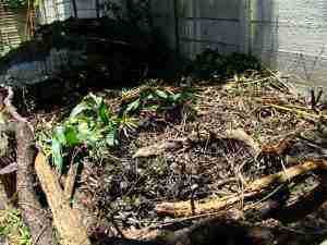 Making a compost pile green brown.