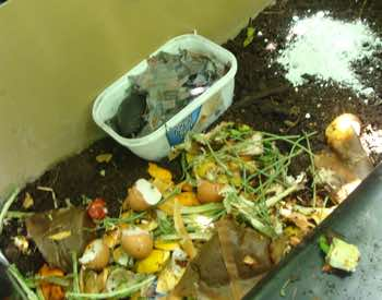 compost, kitchen waste, lime and worms