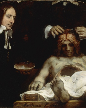 Rembrandt painting of the brain and meninges