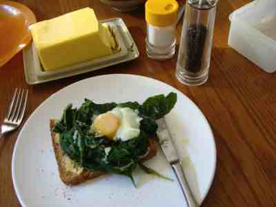 Spinach with a poached egg