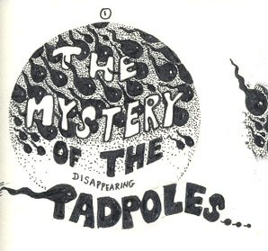 The first tadpole picture.