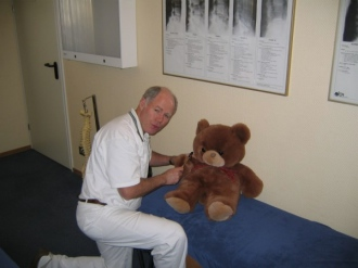 Teddy undergoing a chiropractic examination.