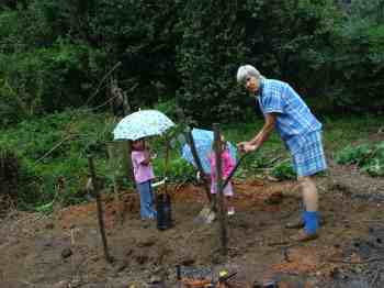 Send granny out to plant the avocado tree with help from the grandchildren.