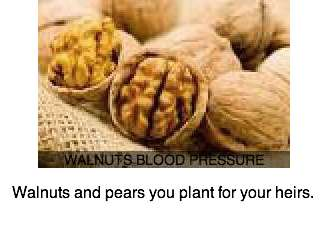 Photograph of walnuts for their effect on blood pressure.