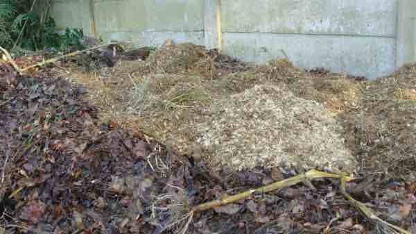 Our compost pile with added horse manure.