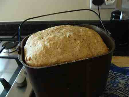 Bread machine loaf baked using solar power is dependent on refrigeration to keep the wheat berries from bugs and moisture.