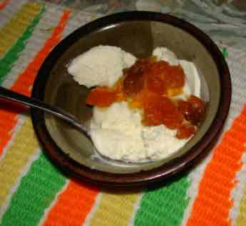 Easy homemade vanilla ice cream with gooseberries.