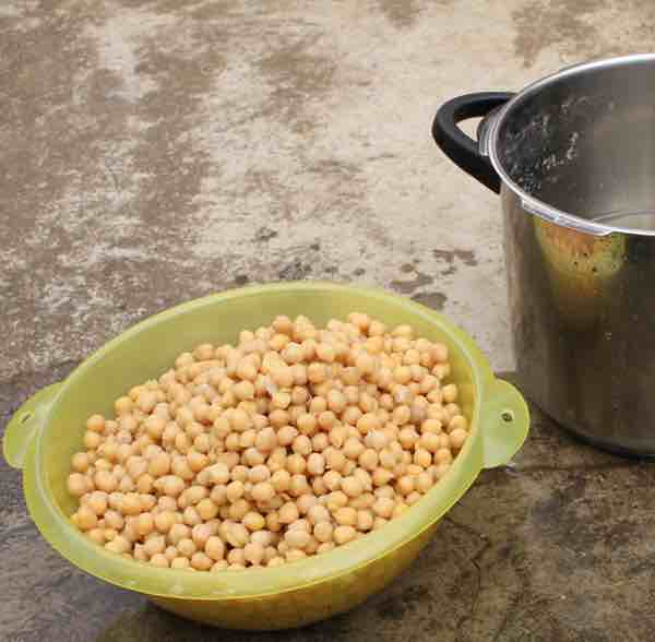 The sprouting chickpeas then need to be pressure cooked before turning them into hummus.