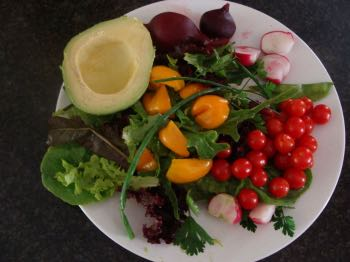 Summer salad just waiting for a dollop of hummus.
