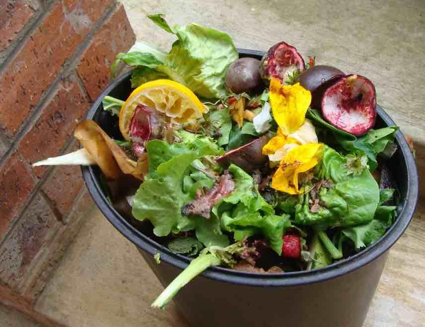 Compost bins gardening